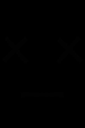 icon 22